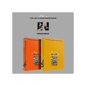 stray kids 1st album repackage in life standard ver